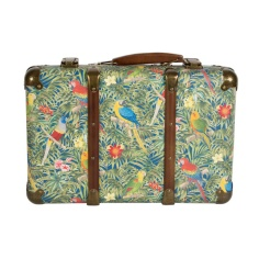 Sass-and-Belle-Parrot-Paradise-Cardboard-Suitcase-Papegaai-Paradijs-Koffer-Elenfhant-2