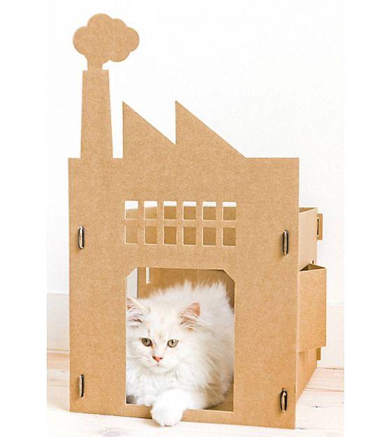 KEK Amsterdam kattenpandje