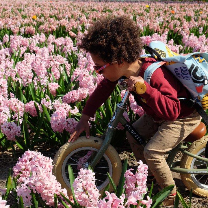 bloemen-5933-2.jpg