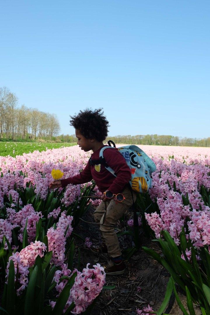 bloemen-5998.jpg