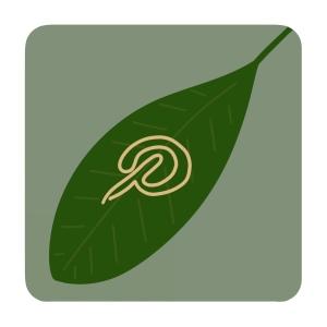 Knop naar Pinterest tuininspiratie